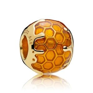 Dripping Honey Honeycomb Charm 767120EN158
